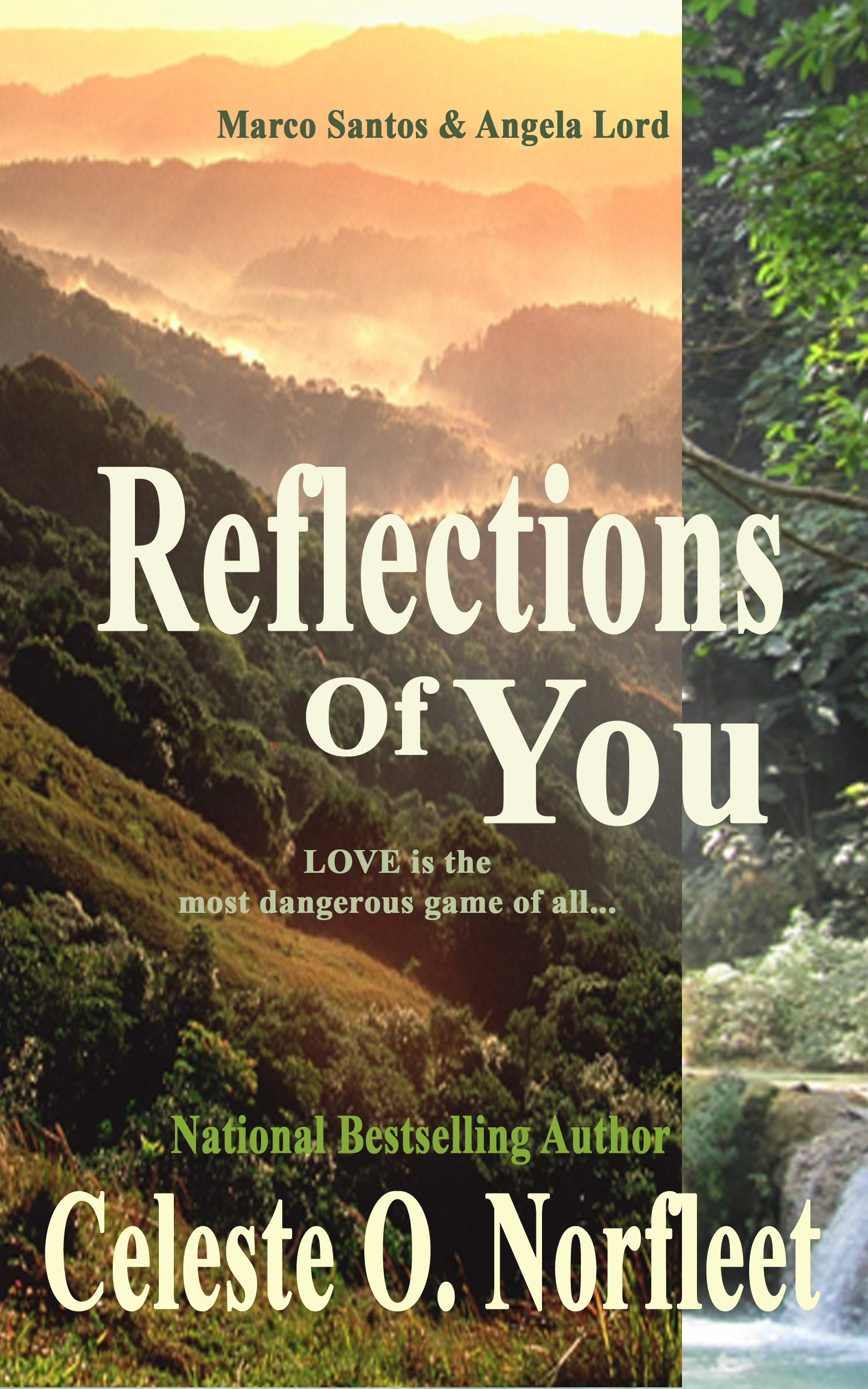 Reflections on Cover